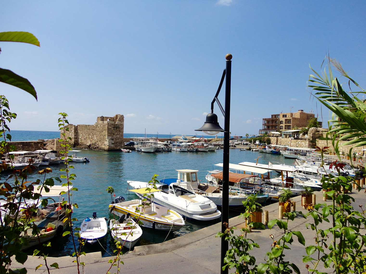 Byblos beautiful fishing harbour Lebanon